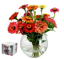 FLÓRA váza koule 16cm